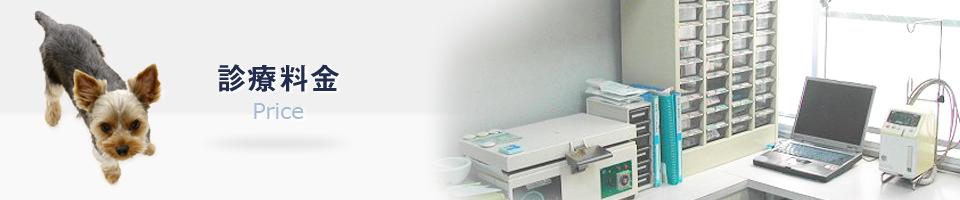 大和市の山口獣医科病院(犬•猫•ウサギなどの動物 …