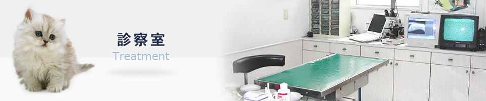 大和市の動物病院 | 施設の口コミ・評判 [エキテン]